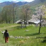 Colle Attia Monte Doubia - 01