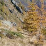Sentiero Balcone Alto Ala - 03