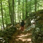 Sentiero Balcone Basso Ala - 05