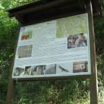 Sentiero Natura - Viù